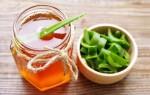Лечебные свойства и применение алоэ с медом