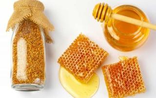 Правила употребления воска из пчелиных сот
