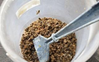 Лечение болезней суставов пчелиным подмором
