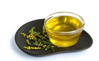 Полезные свойства и противопоказания уникального донникового меда