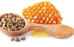 Полезные свойства и противопоказания меда с прополисом
