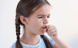 Прополис от кашля, при ангине и тонзиллите