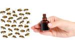 Лечение пчел йодом
