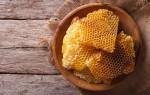 Как и где правильно хранить мед в сотах