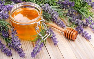 За что так ценят лавандовый мед